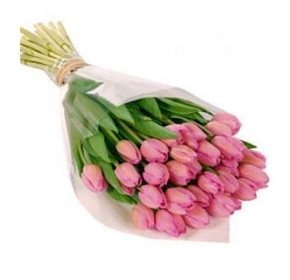 Bouquet of 29 pink tulips