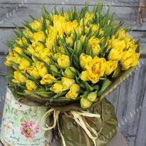 101 yellow tulip