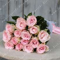 Bouquet of 15 Dutch pink roses