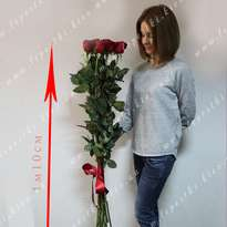 Bouquet of 11 roses 1.20 m