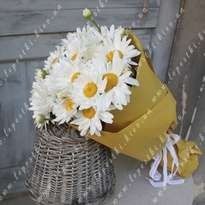 Bouquet of 19 daisies
