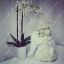 """Toy from fresh flowers """"Angel and Orchid"""""""