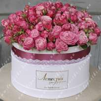 Mega Big Hat Box of 41 Roses (h30)
