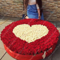 1001 heart-shaped rosesм